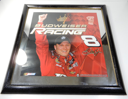 DALE EARNHARDT JR MIRROR